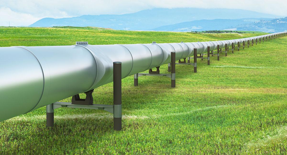 Pipeline Field