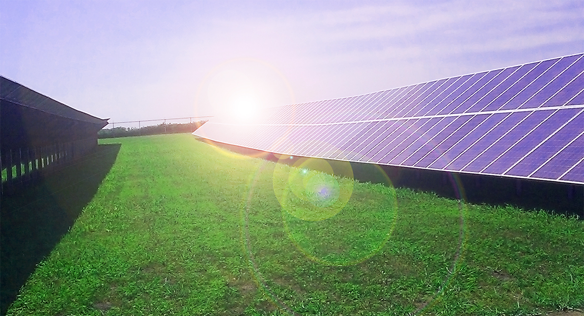 Slayton Solar