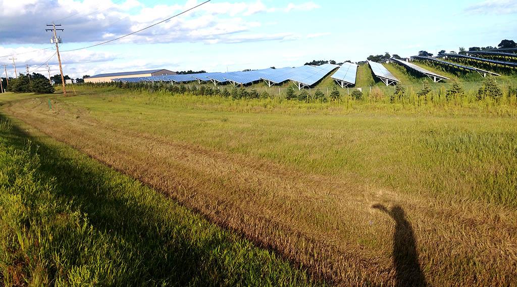A solar garden